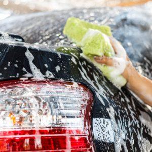 Carwash & Shampoo
